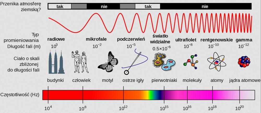 fale mikrofalówki na wykresie spektrum fal elektromagnetycznych