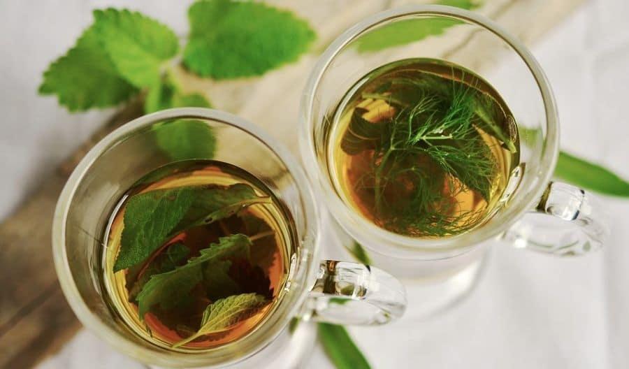ziołowa herbata nie jest w praktyce herbatą