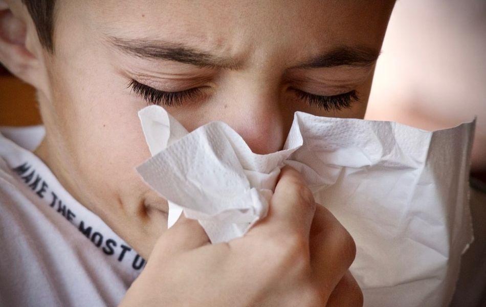 czy kurz powoduje alergie i szkodzi zdrowiu