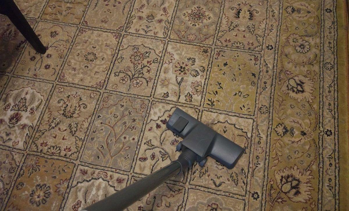 odkurzanie dywanu pełnego sierści odkurzaczem Zilan ZLN8471