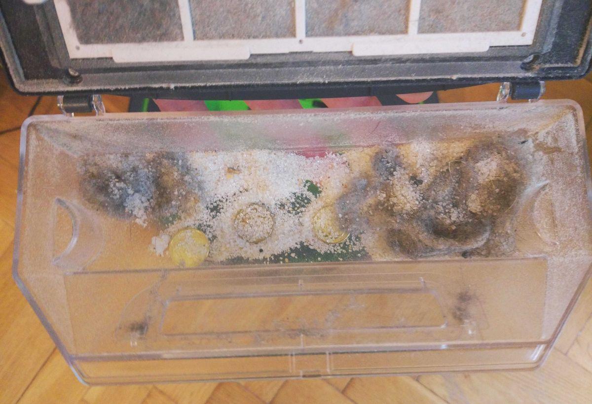monety, cukier, mąką, bułka tarta i monety w pojemniku po teście