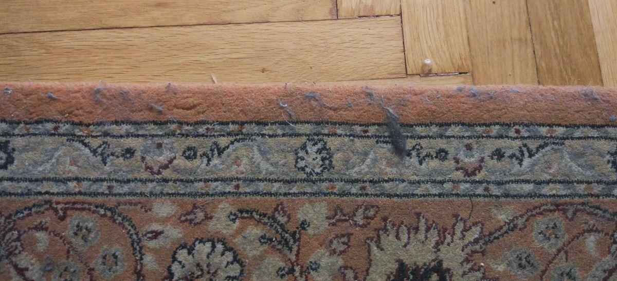 sierść na dywanie przez testem Moneual MBOT 950 3