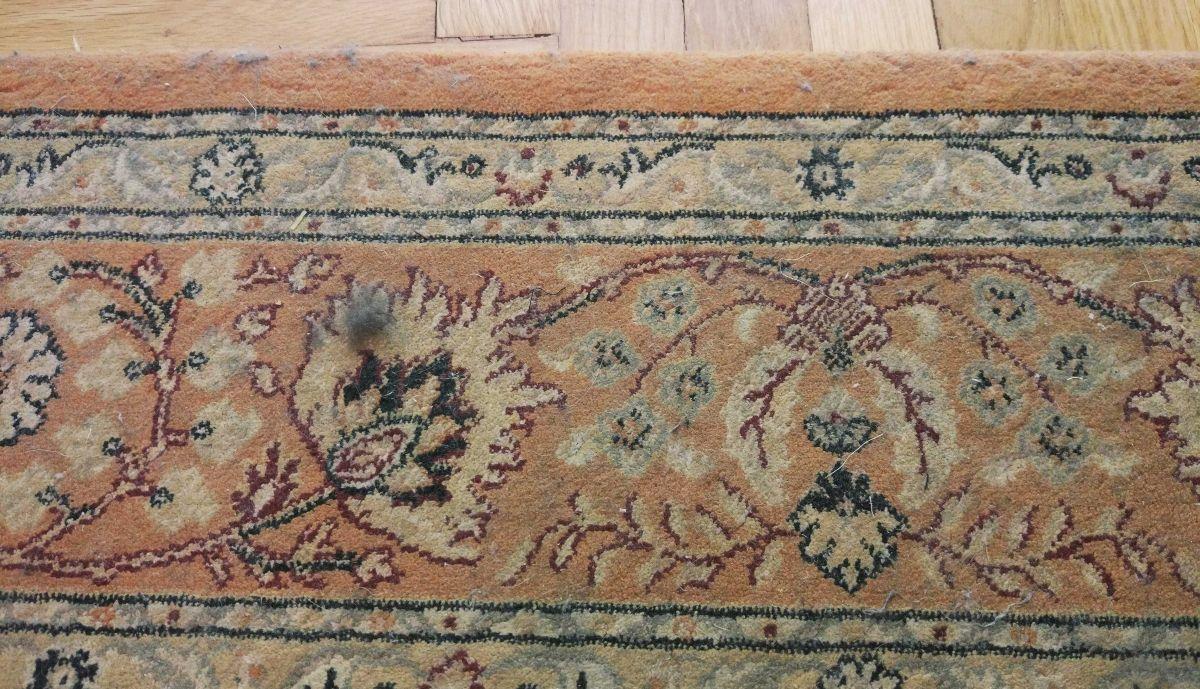 pełno kociej sierści na dywanie przed testem odkurzania Philips XC8147/01 2