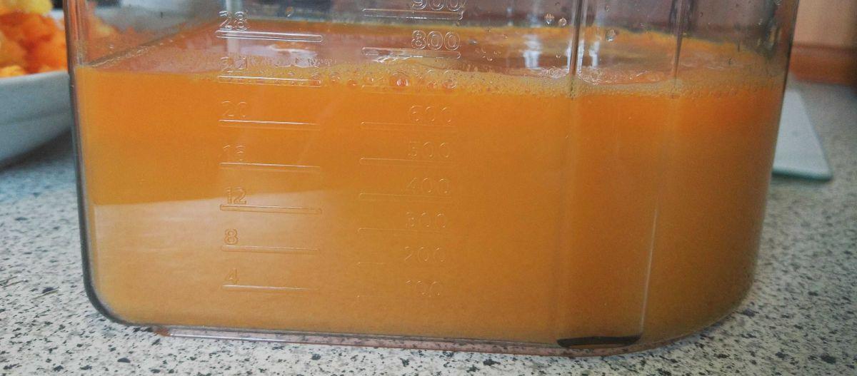 Philips HR1889/70 sok wyciśnięty z cytrusów, ananasa, marchwi