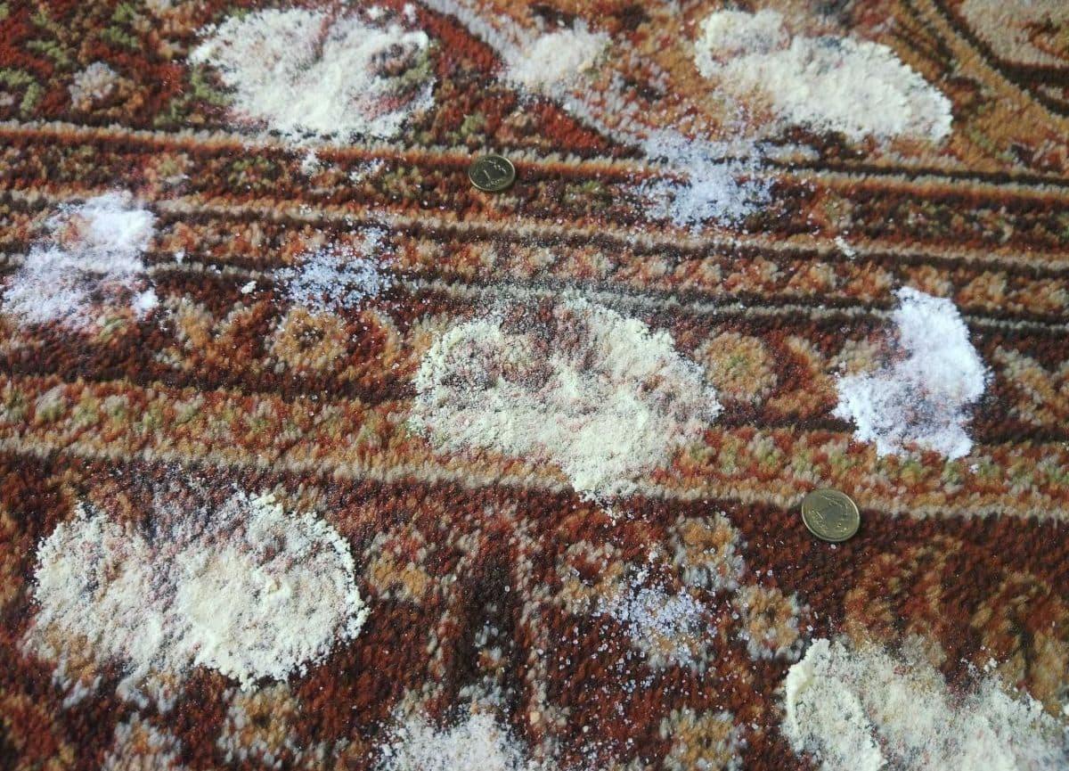 PURON PR10 - dywan przed testem odkurzania produktów sypkich i monet