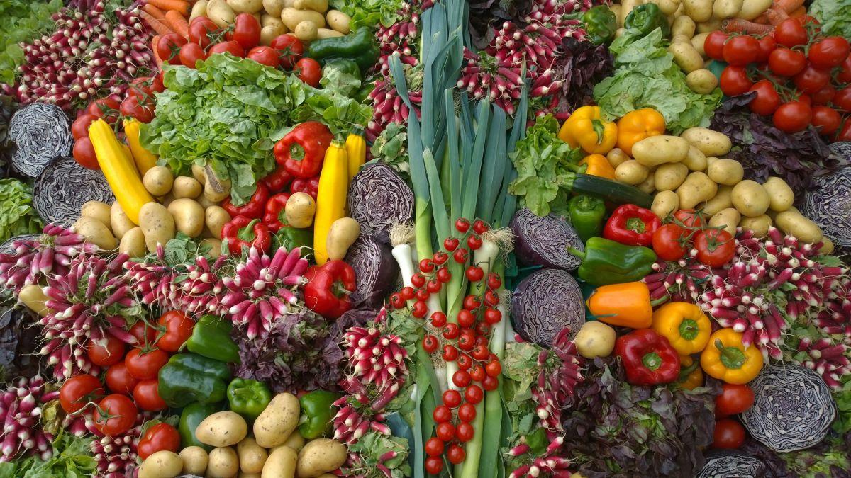 wiele różnych warzyw nadających się do wyciskania w wyciskarce wolnoobrotowej