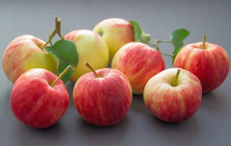Czy do wyciskarki trzeba obierać owoce i warzywa?