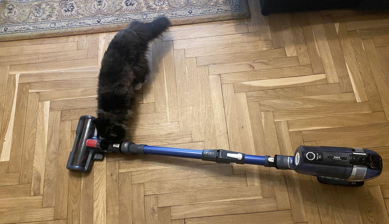 Tefal X-Force Flex 11.60 Aqua TY9890 i zaciekawiony kot perski