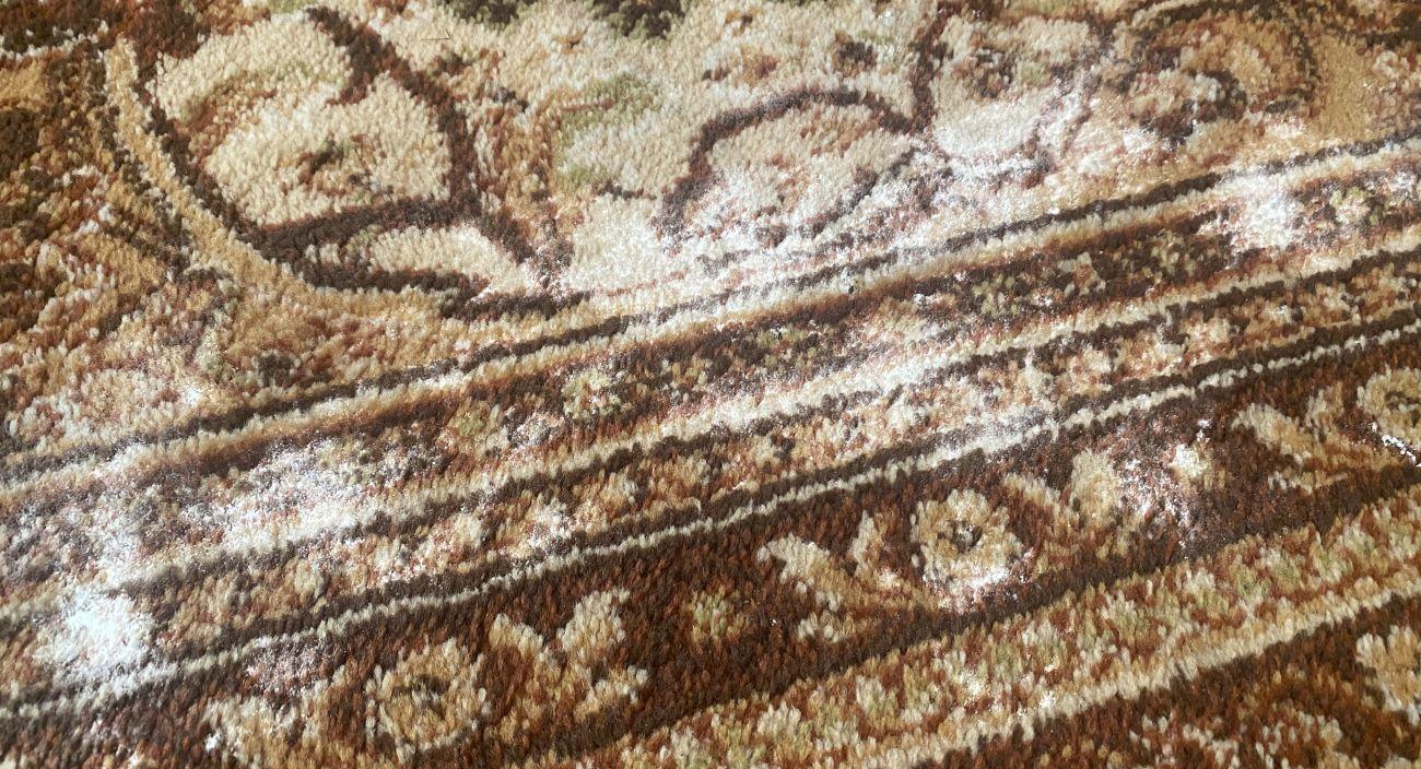 mąka wtarta w dywan przed testem odkurzania puszystą szczotką Tefal X-plorer Serie 95 Animal RG7975