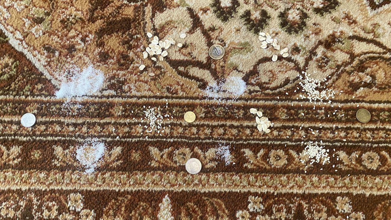 cukier, płatki, sezon i monety na dywanie przed testem Tefal X-plorer Serie 95 Animal RG7975