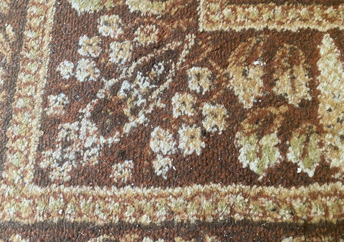 Ekstremalnie zaśmiecony dywan przed testem odkurzania Tefal X-plorer Serie 95 Animal RG7975