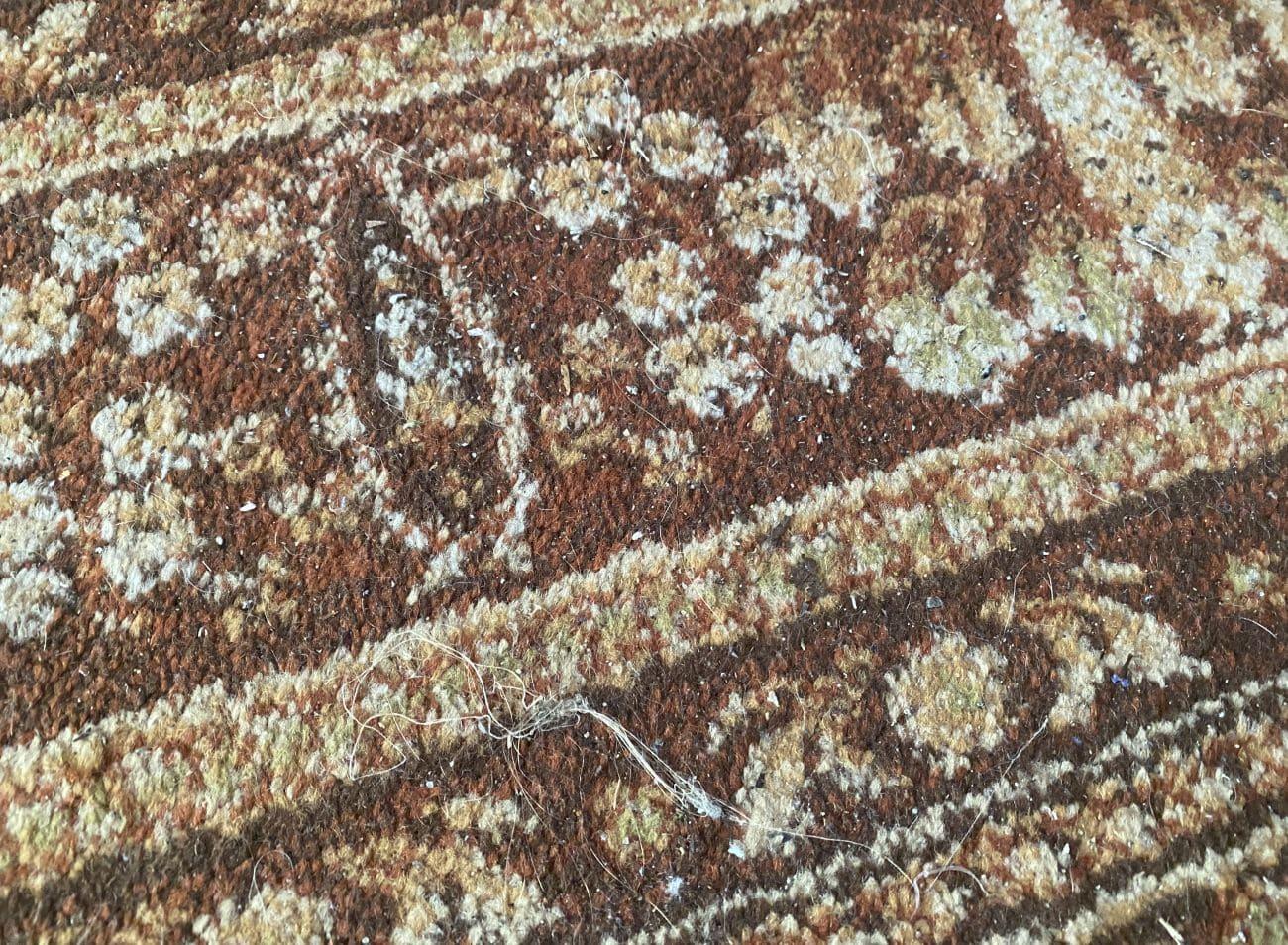 Stan zaśmieconego dywanu przed testem odkurzacza Philips XC8349/01